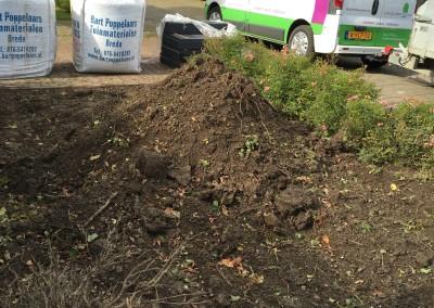 Verpalen Hoveniers - Aanleg tuin zomer
