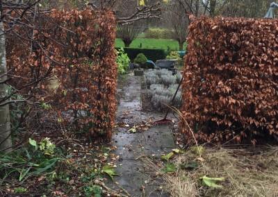 Verpalen Hoveniers - Winterbeurt